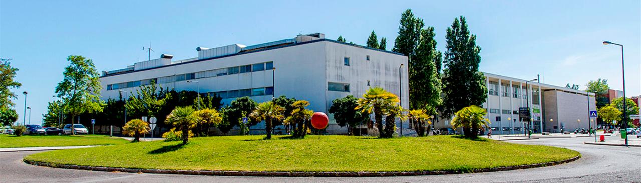 Universidade Nova de Lisboa cria semestre Pré-Universitário para estudantes internacionais